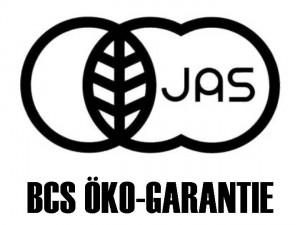 logo-large-jas