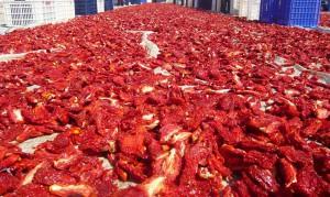 sun-dried-tomato-3